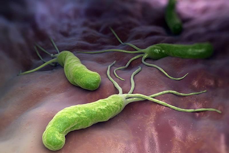 Vi khuẩn HP trong dạ dày có lây không? 1